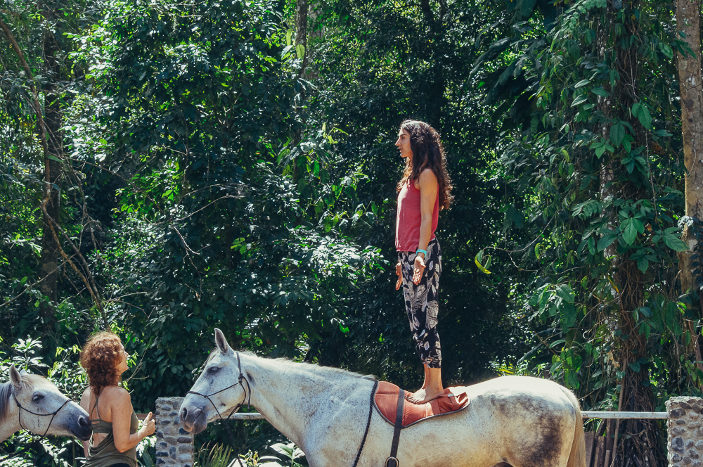 horses-yoga-retreats-44.jpg