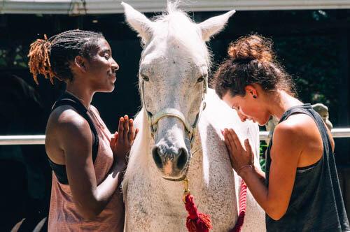 horses-yoga-retreat-37.jpg