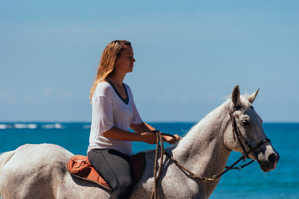 horses-yoga-retreats-4.jpg