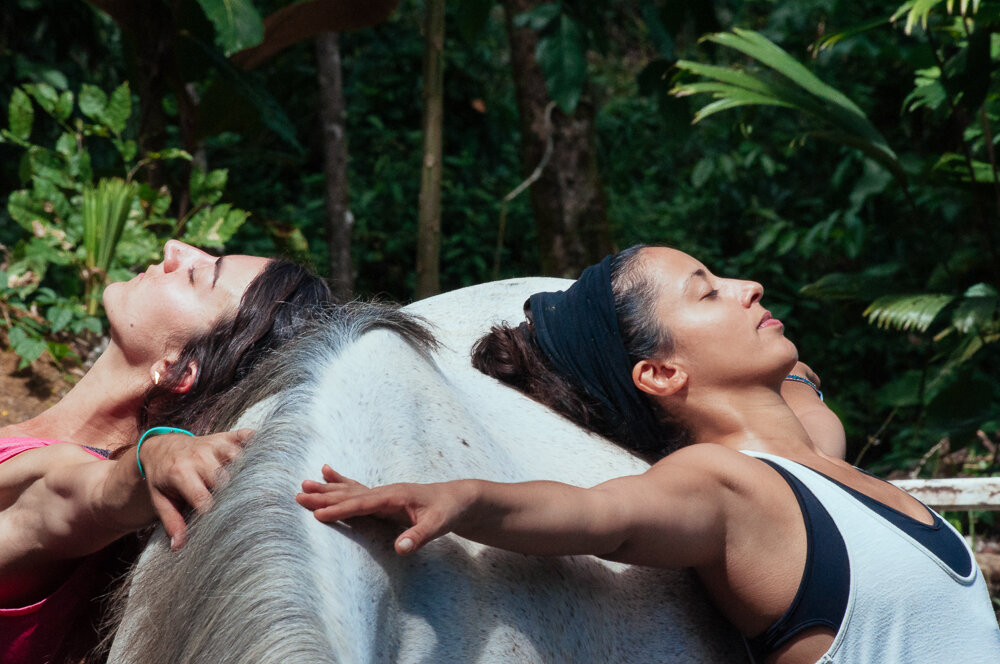 horses-yoga-retreats-41.jpg