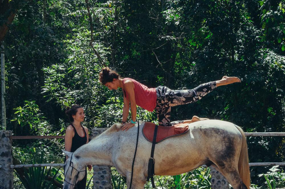 horses-yoga-retreats-42.jpg