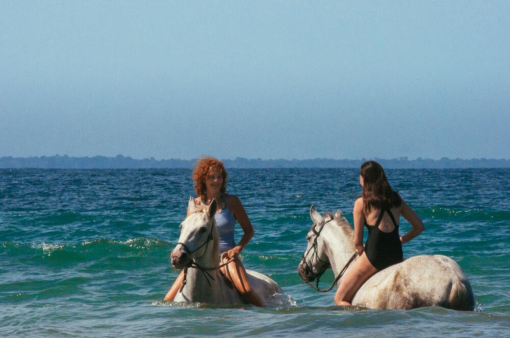 horses-yoga-retreats-46.jpg