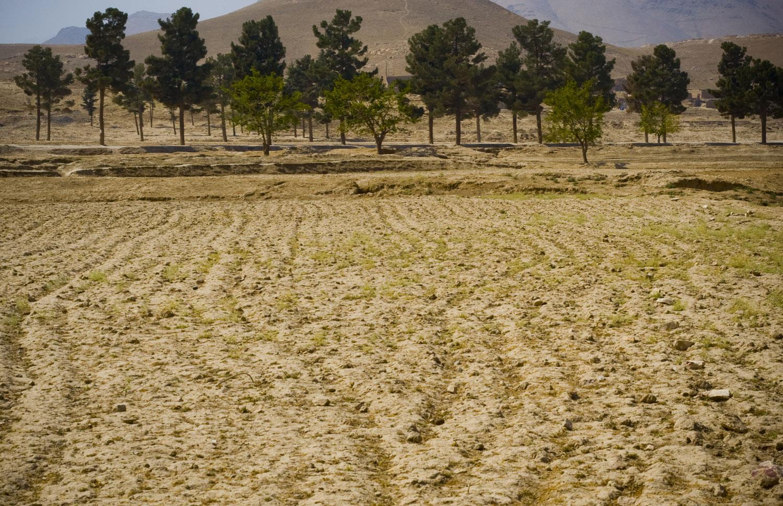 afghanistan_015_1.jpg