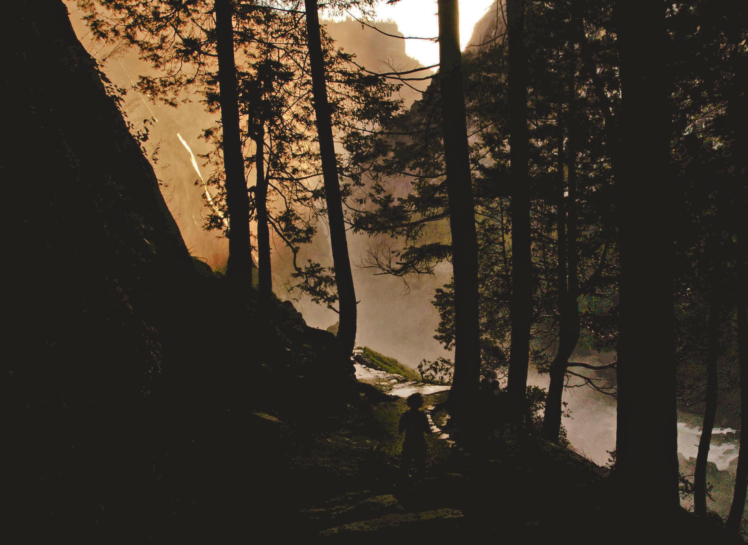 nature043.jpg