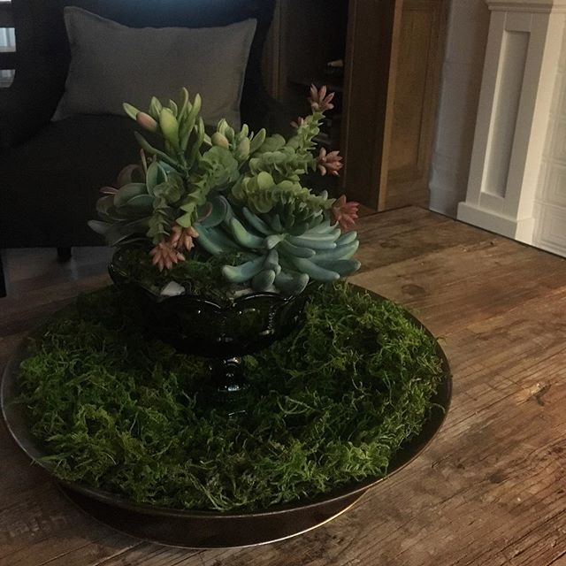 Just completed my coffee table decor using a vintage glass compote and gold miners pan! #accessories  #creativity #decor #diy #diyhome #diyinterior #handmade #handcrafted #handmadeinteriors #interior #interiors #instadesign #interiordecor #interiordesign #interiorstylist #livingroom  #livingroomdecor #original #oneofakind #retro #repurpose #revivaldesign #recycledvintage #succulents #tabledecor #vintage #vintagehome