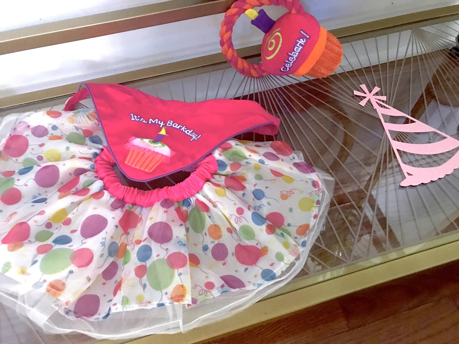 The tutu, bandana, and toy are from Petco...Party hat made with my Cricut machine.