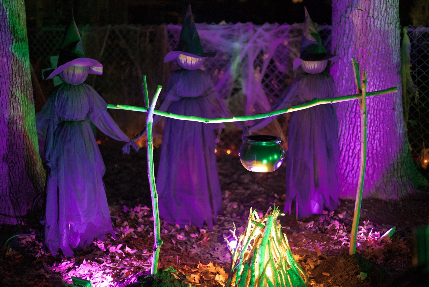 With LED flood lights I was able to uplight the witches to make them more visible. The purple also reflects well off the white cloth above.