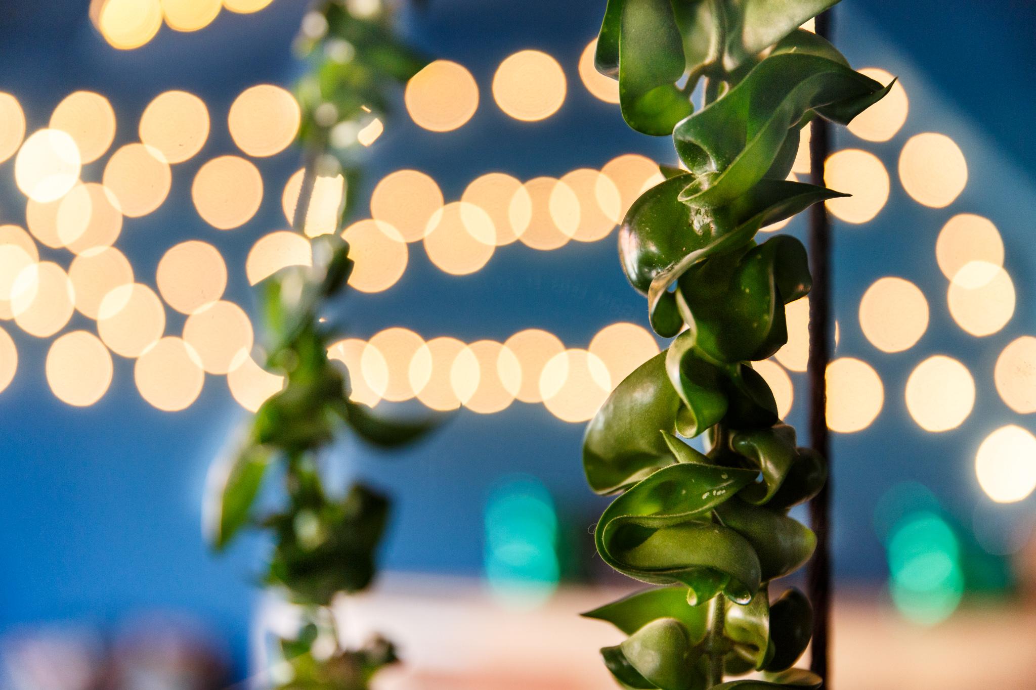 PeakAce-Büro-Beleuchtung-Lichterkette-Dittmarandfriends.jpg
