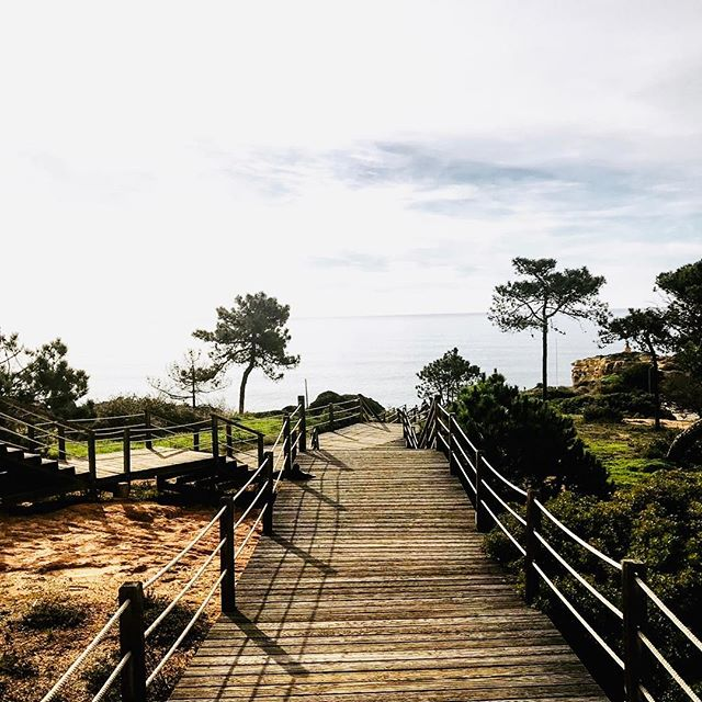 Morning 🚶 along the beach 🇵🇹 #albufeira #belgianlions