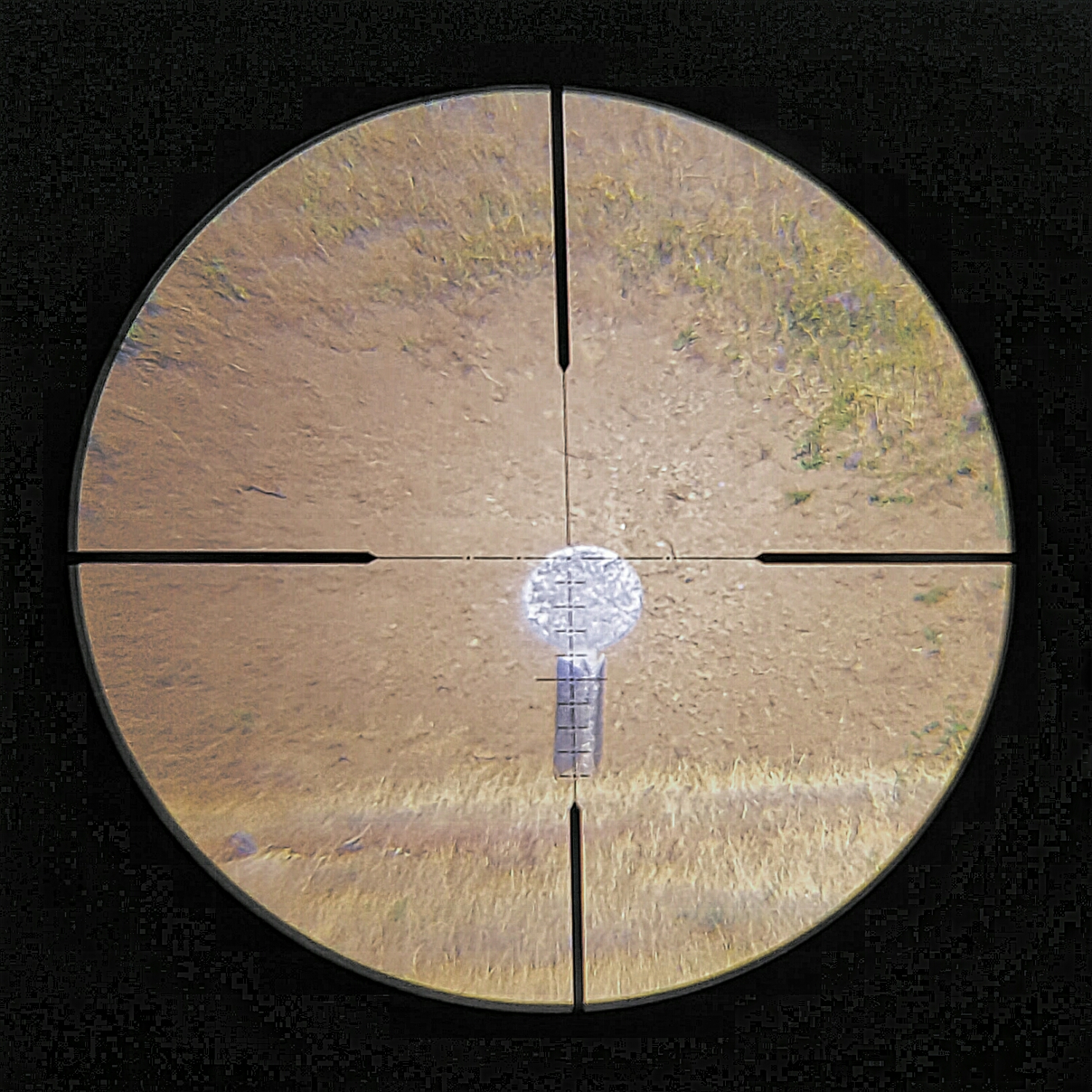 """20"""" plate at 200yds on 16x"""