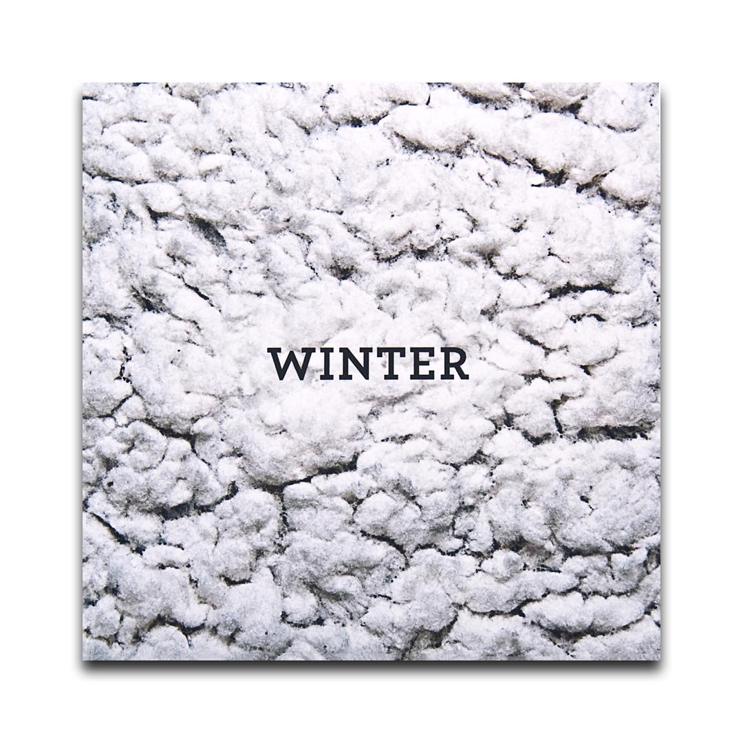 MixinUpTheSeason_Winter_SleeveF.jpg