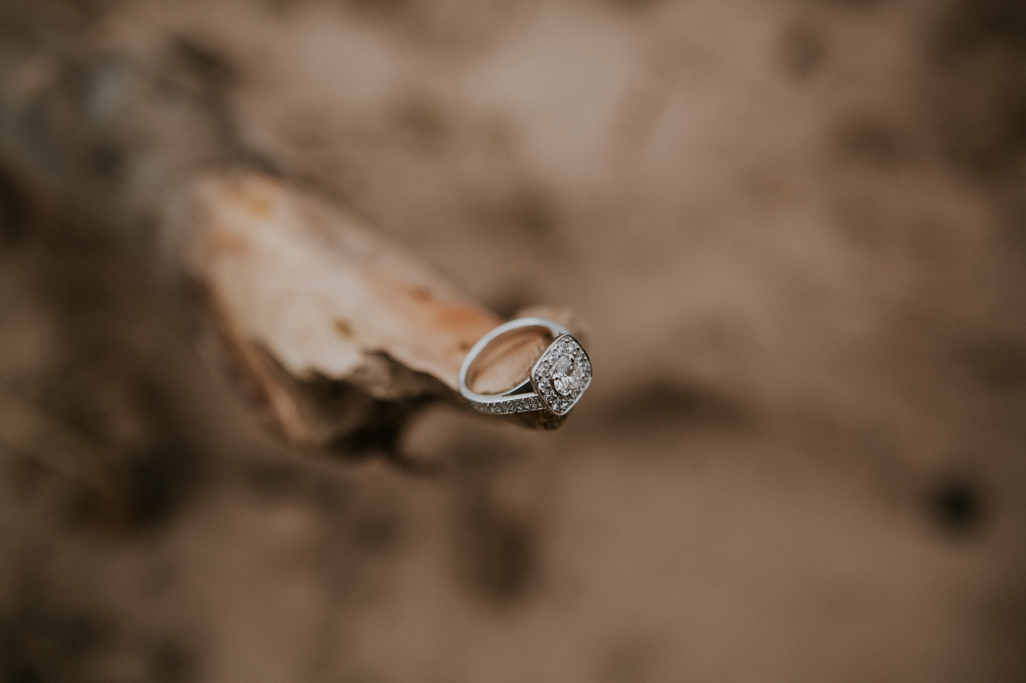 Diamonds engagement ring shot