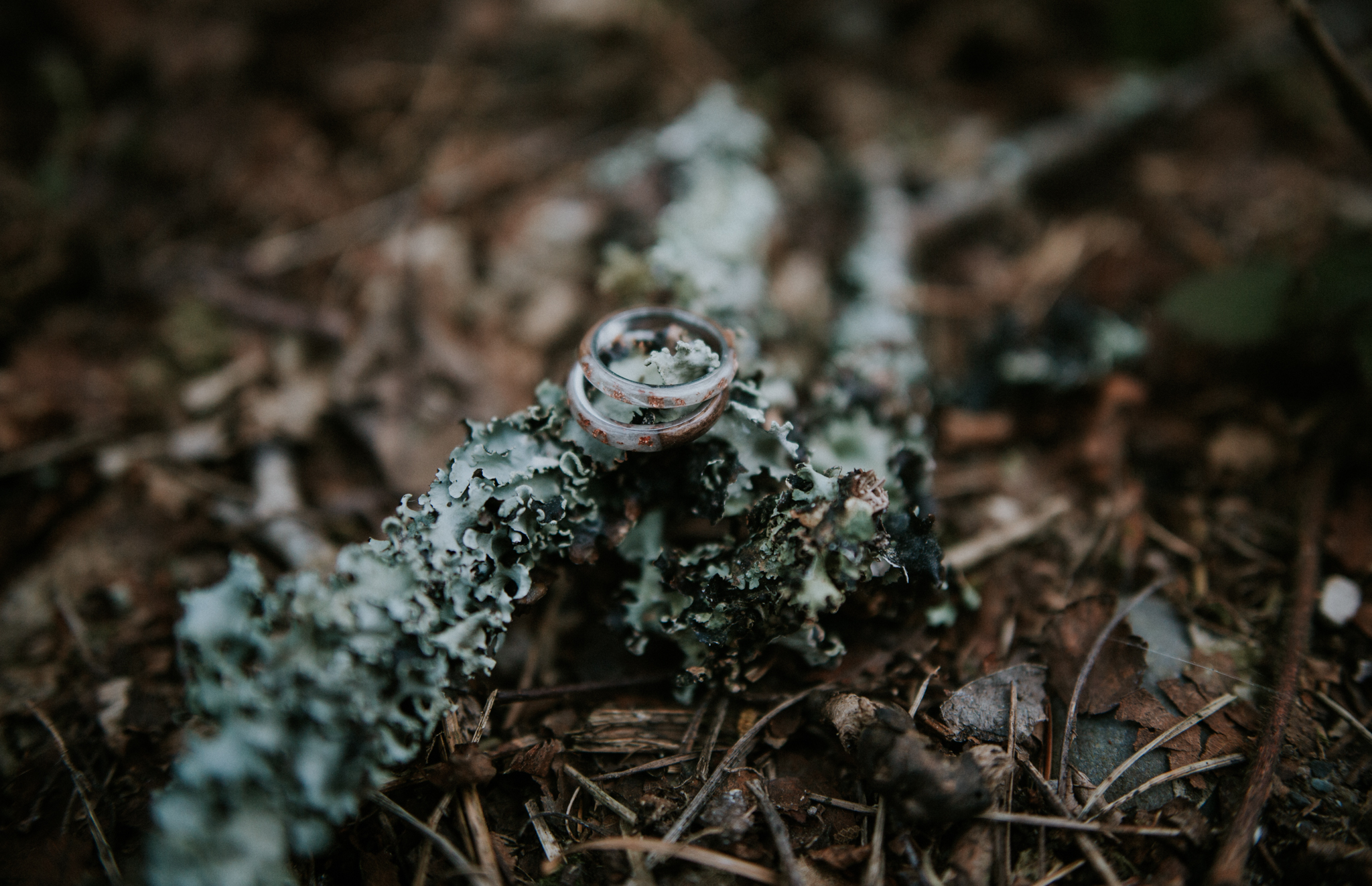The alternative wedding rings on the ground of Inish Beg Estate in Ireland
