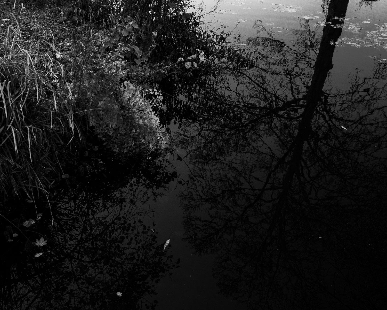 untitled shoot-118.jpg