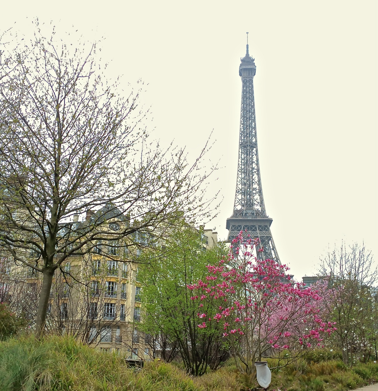 Paris 6.jpg