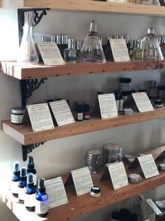 Baltimore MD - B.Willow plant apothecary.JPG