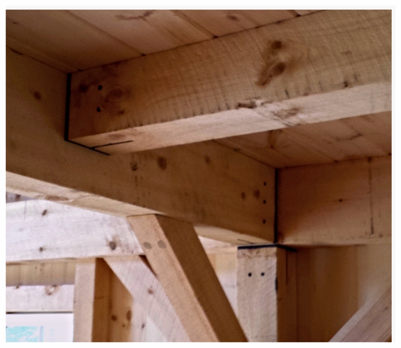 The Wilton - interior framing.jpg