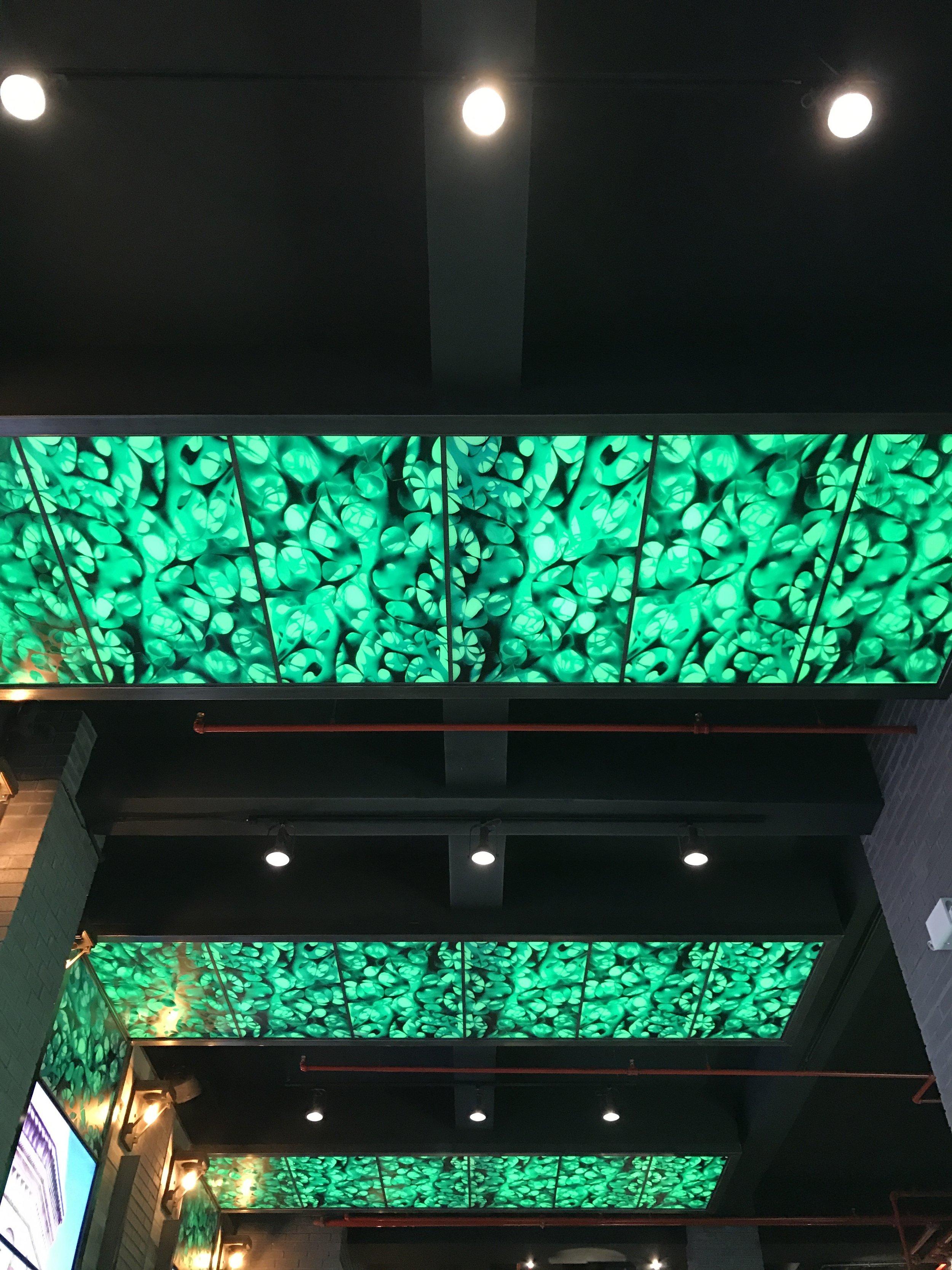 LED Lighting System,Gogi37, New York