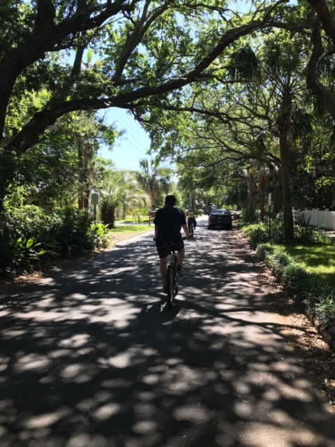 This picture was taken on Sullivan's Island, when we biked from the main drag on IOP all the way across Sullivan's.
