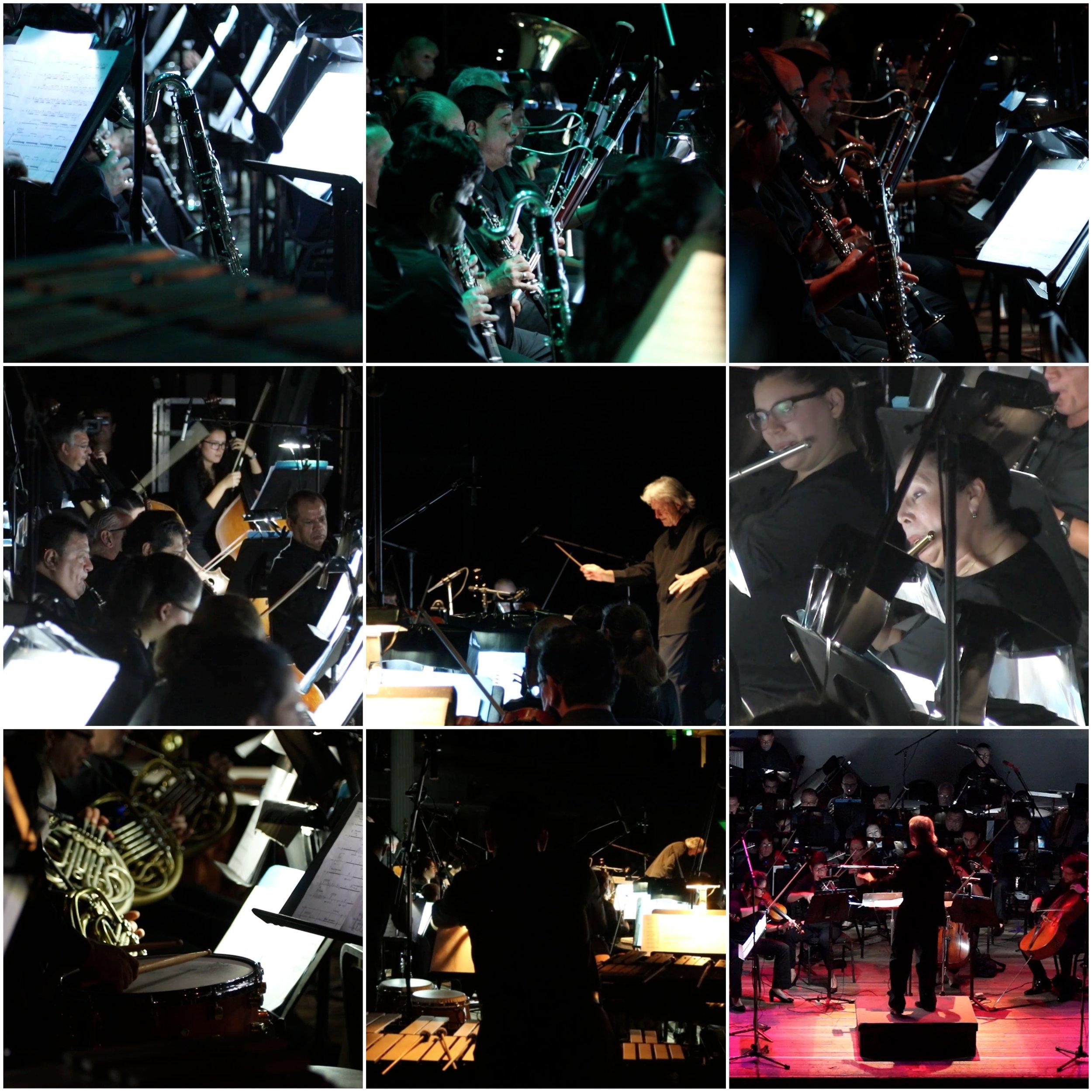 Vientos collage.jpg