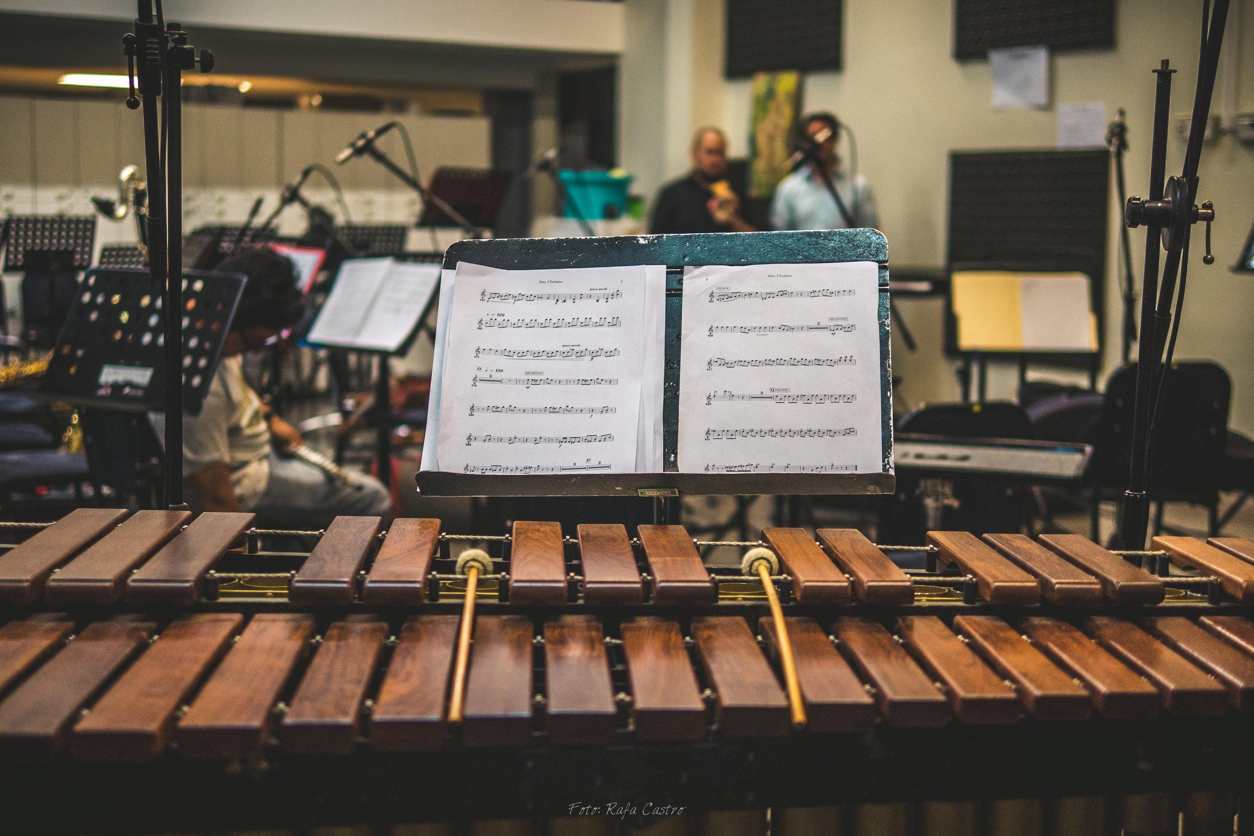 Andrés Soto y Orquesta Sinfónica Heredia-23.jpg