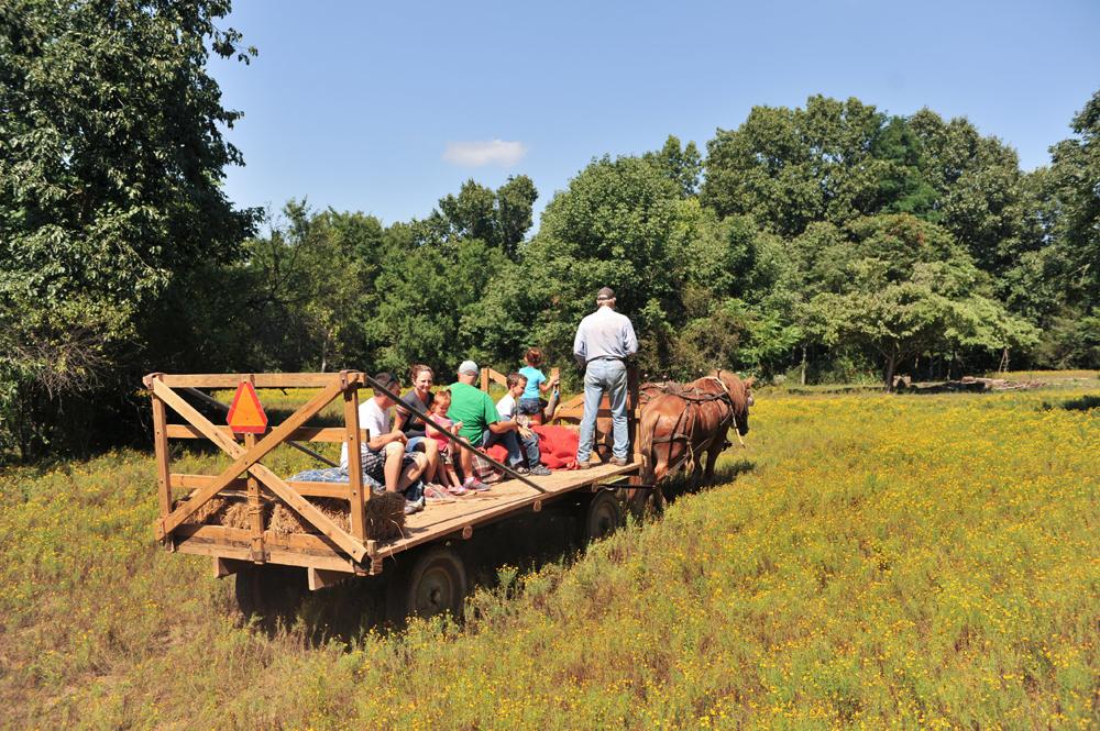Horse Drawn Hay Ride
