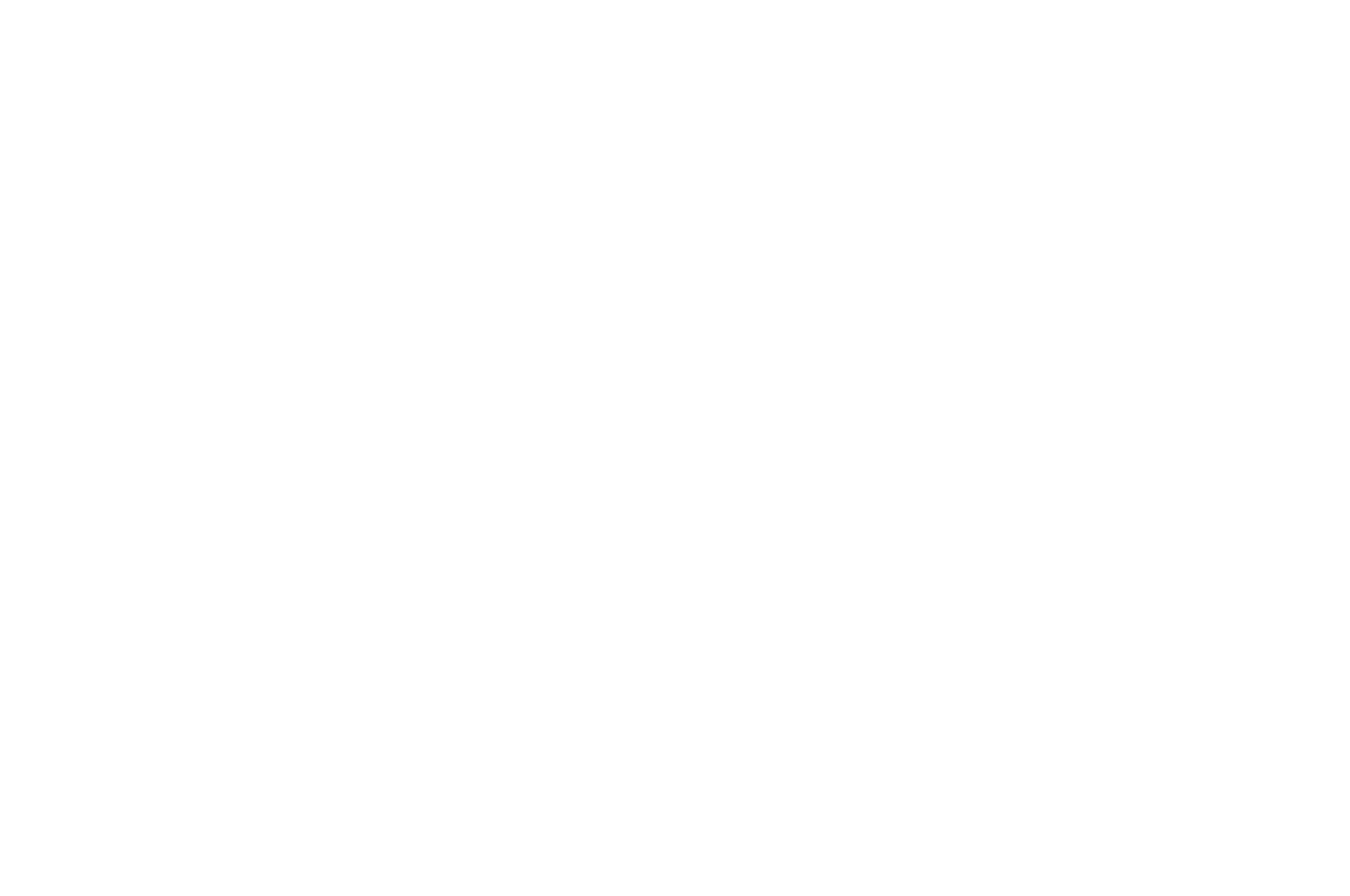 OFFICIAL SELECTION - Sarajevo Fashion Film Festival - 2017 (1).png