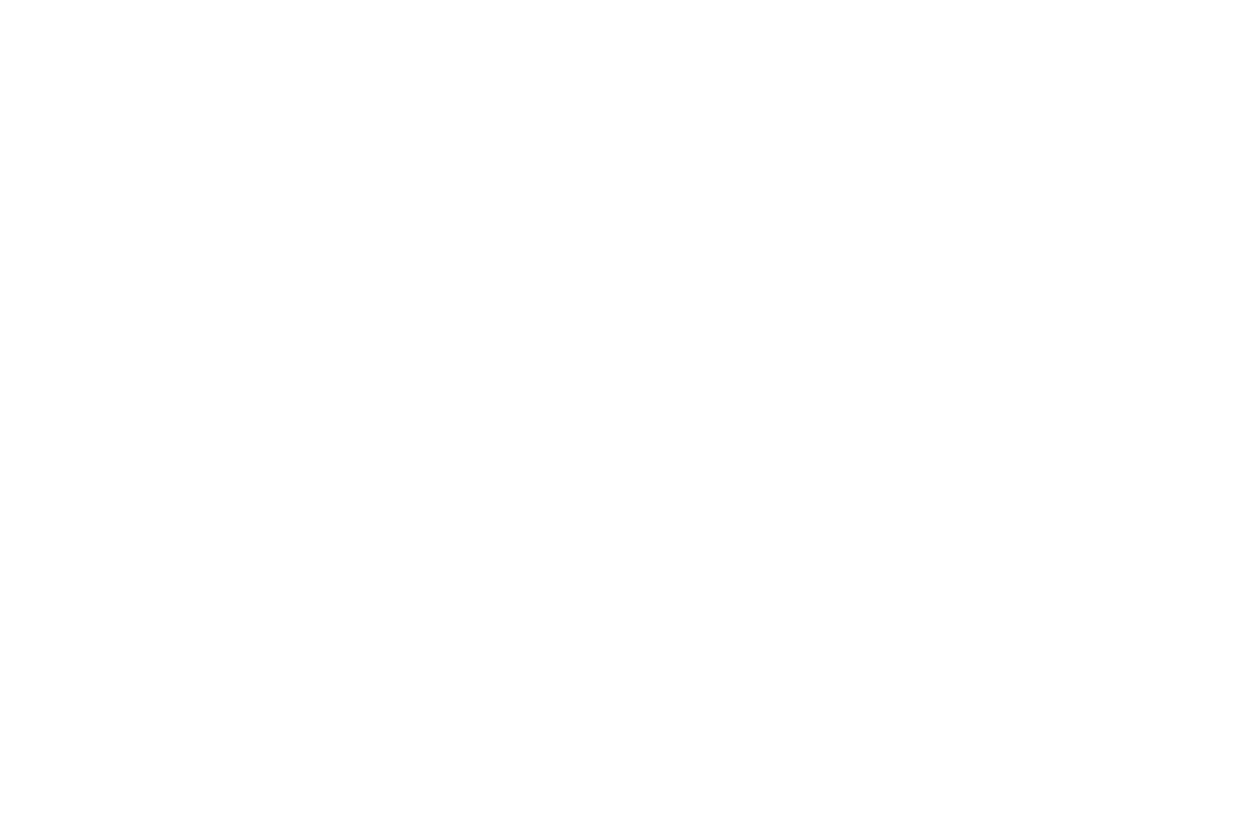 OFFICIAL SELECTION - Fake Flesh Film Fest - 2017 (1).png