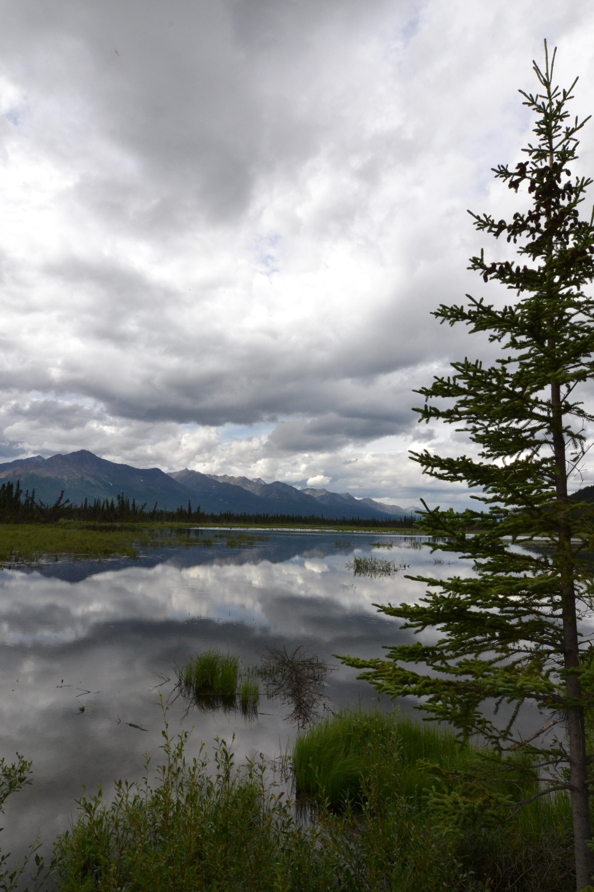this is a simple stop along the highway... you can't get away from alaska's natural beauty