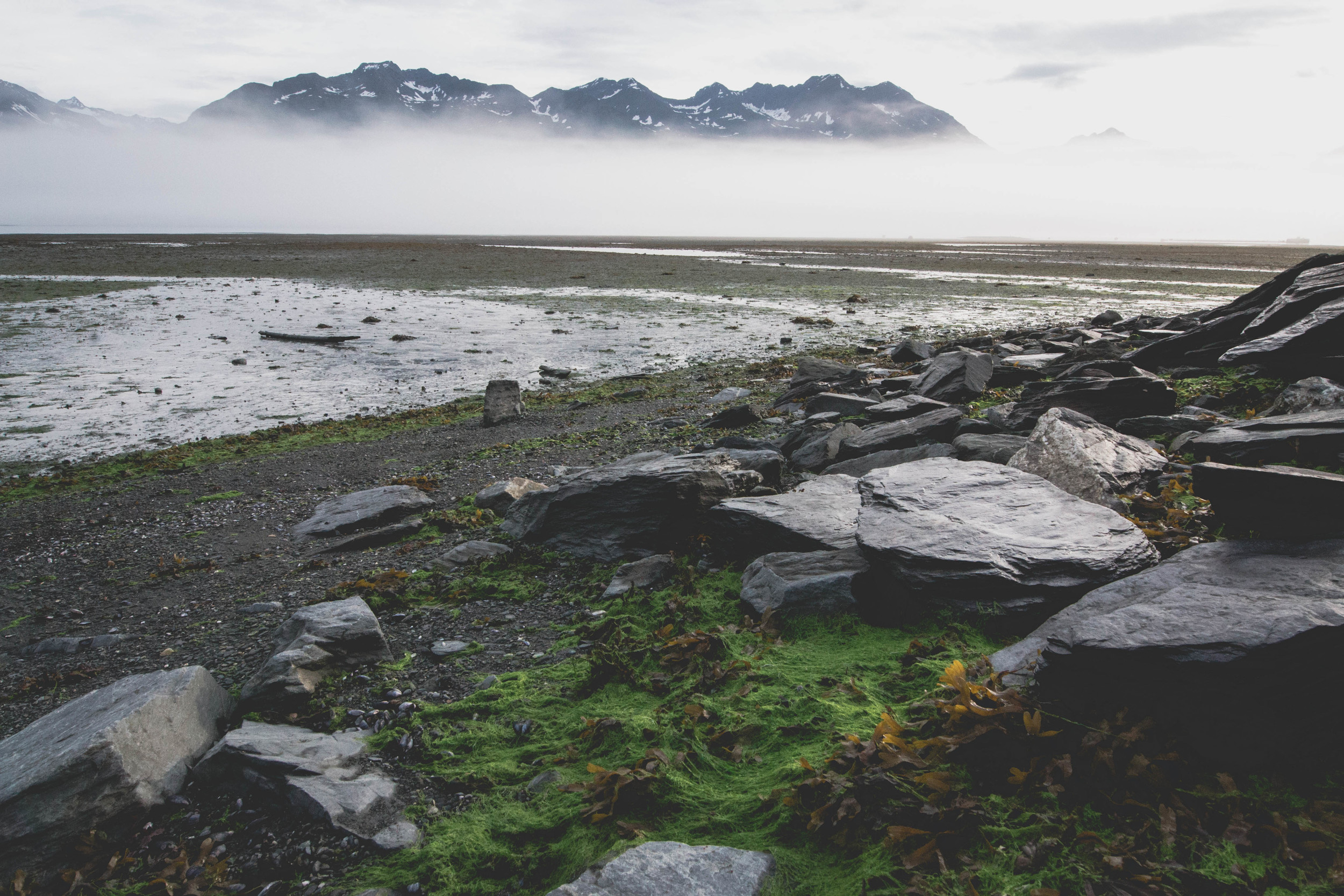 low tide in valdez during an early morning fog