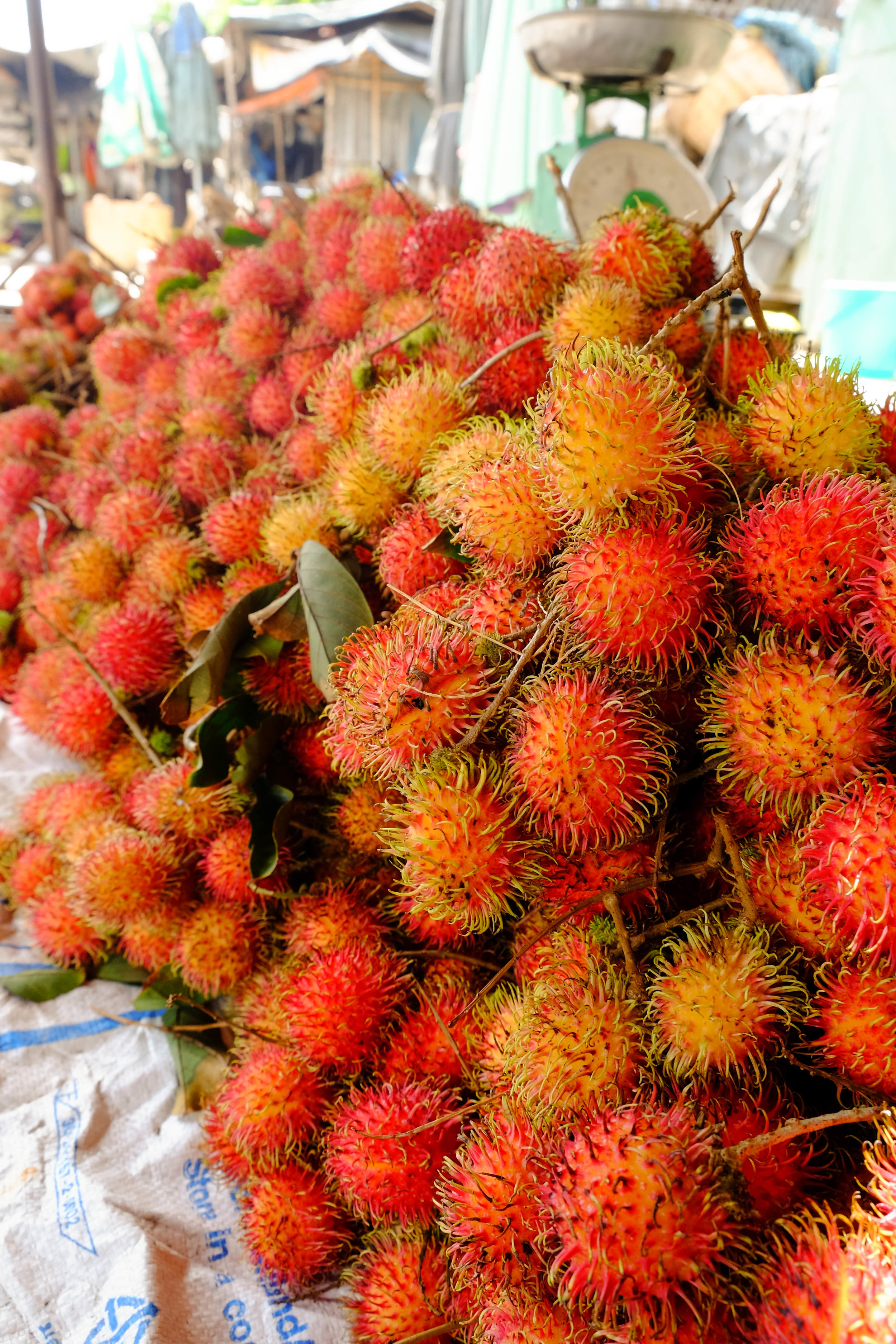 This vietnamese fruit is called rambutant, the outside is quite soft and when you tear it open, the fruit is has a light sweetness and sourness. Good for a post meal cleanse or refresher.