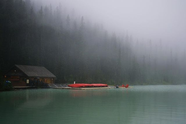 Half morning fog, half smoke. #lakelouise . . . #banffnationalpark #banff #misty #mistymountains #lake #lakelife #earlymorningadventures #explorecanada #canadianrockies #rockymountains
