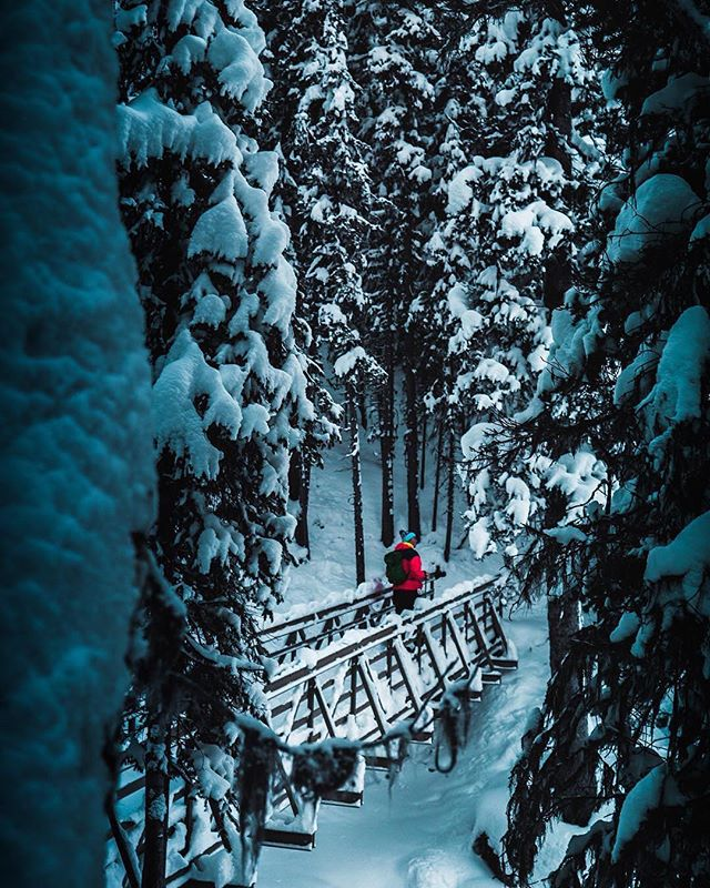 Winter woods is a whole different adventure - keep up the amazing work @masonwrozyna - check out more of his work! 🇨🇦Follow @borealnorthoutdoors For more true north pics, tag your photos #borealnorth To be featured!🇨🇦 . . #borealnorthoutdoors #winterwoods #adventure #winteradventures #snowyforest #thegreatoutdoors #optoutside #hikingadventure #hiking #parkscanada #explorecanada #tourcanada #canadianoutdoors #truenorth #getoutside #imagesofcanada #alberta #explorealberta #albertaparks #kananaskis #upperkananaskislake #peterlougheedprovincialpark #truenorth #abparks #canadinrockies #naturephotography #natureperfection #travelphotography