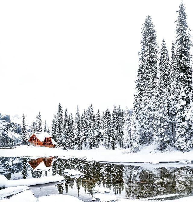 Winter is a whole different world... Happy December! 🌲🏔❄️ Great photo by @chrismullinphoto 📷 . 🇨🇦 . . #borealnorth #emeraldlake #yohonationalpark #yoho #wintercabin #cabinlife #truenorth #beautifulbc #parkscanada #explorebc #winterwonderland #lakelife #canadianrockies #rockymountains #exploremore #thegreatoutdoors #travelcanada #discovercanada #wintertravel #winterhike #canadasworld #insidecanada