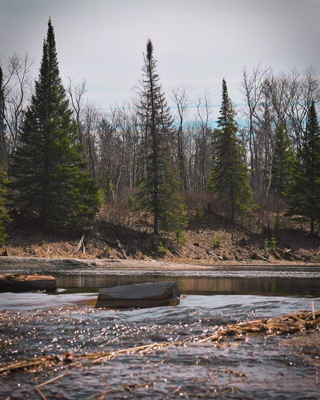Happy earth day 🌎 . . . . #earthday #getoutside #exploremb #whiteshell #whiteshellprovincialpark #manitoba #pinepointrapids #borealnorth #trailsmanitoba #canada #travelcanada #earth #hikingadventures #rapids