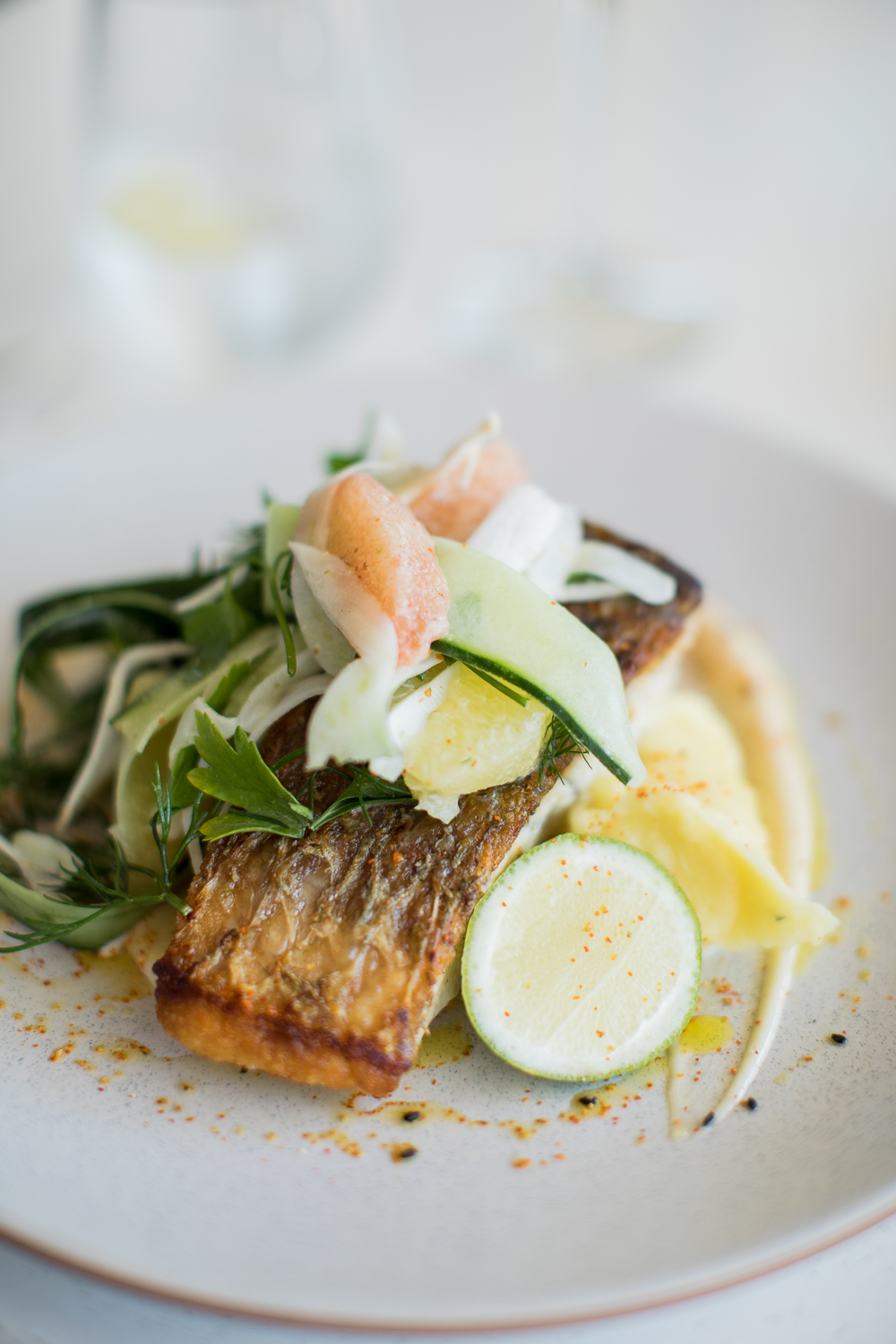 fish of the day - with wasabi mash, grapefruit, fennel & cucumber salad, anchovy kewpie
