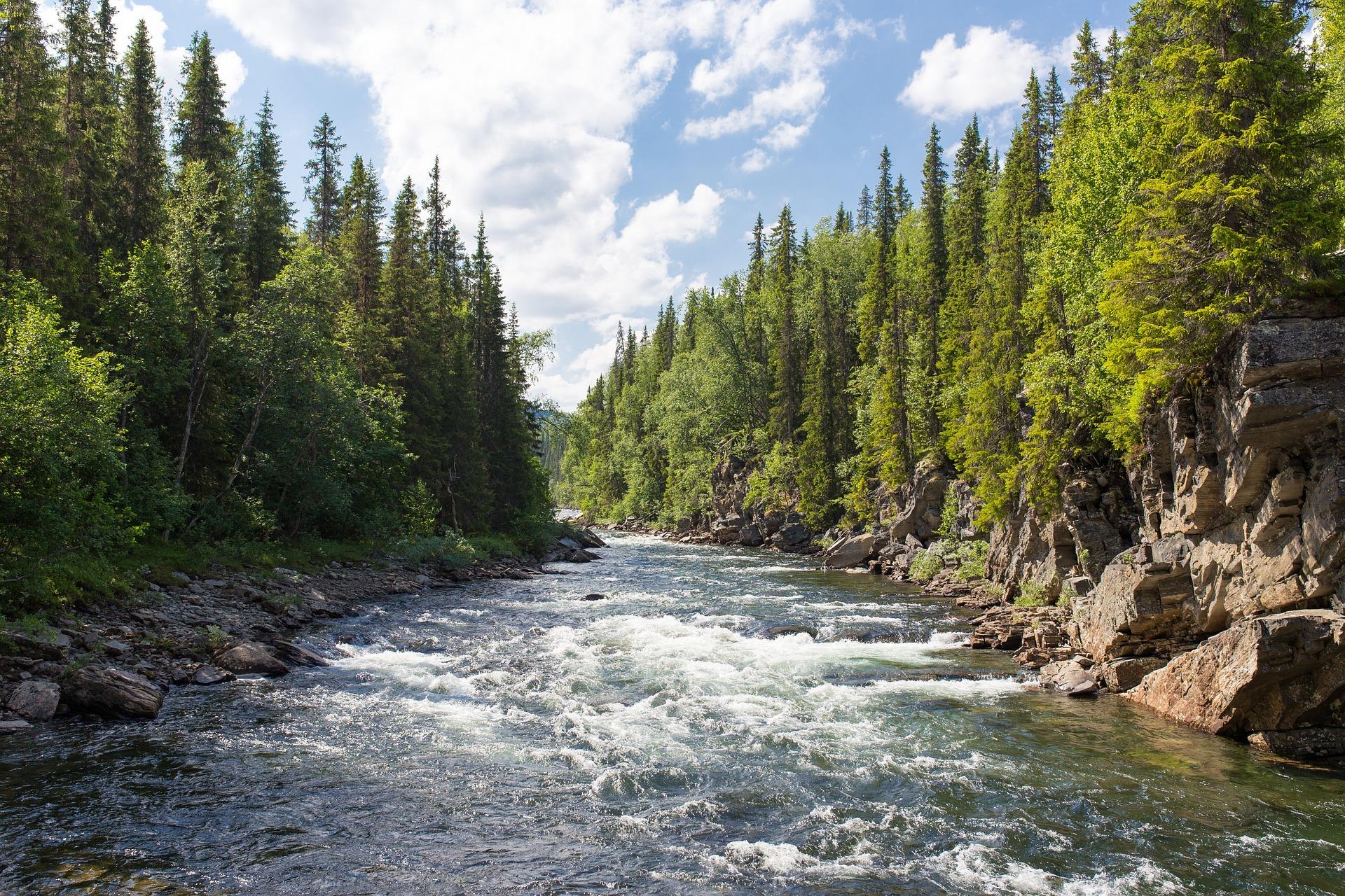 river-1209025_1920.jpg