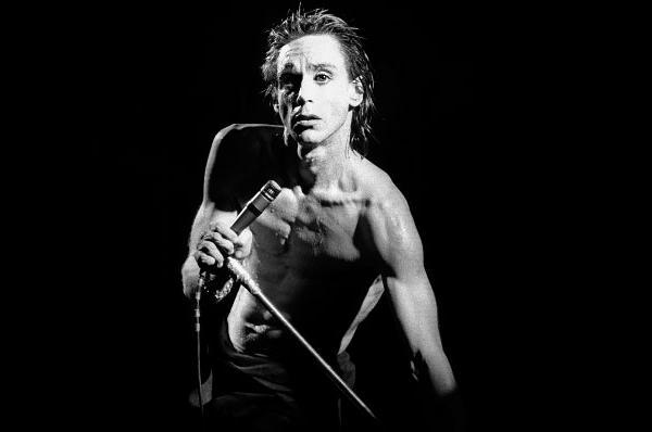 Iggy Pop en 1978