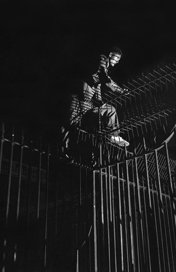night climbers 10.jpg