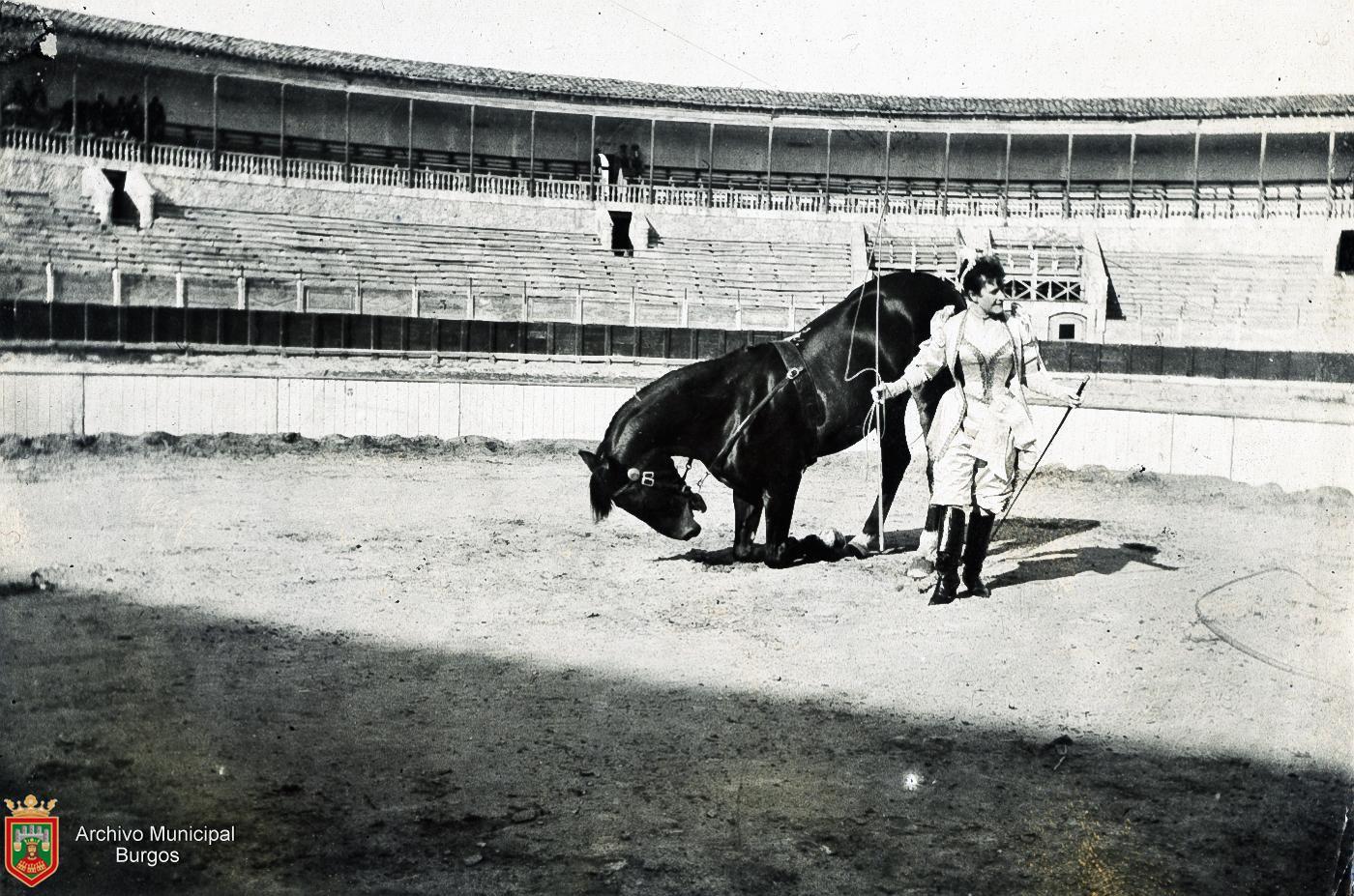 Caballo arrodillado sobre sus patas delanteras y domadora del Circo en la Plaza de Toros de Burgos (1893). Fotografía: Ayto. Burgos