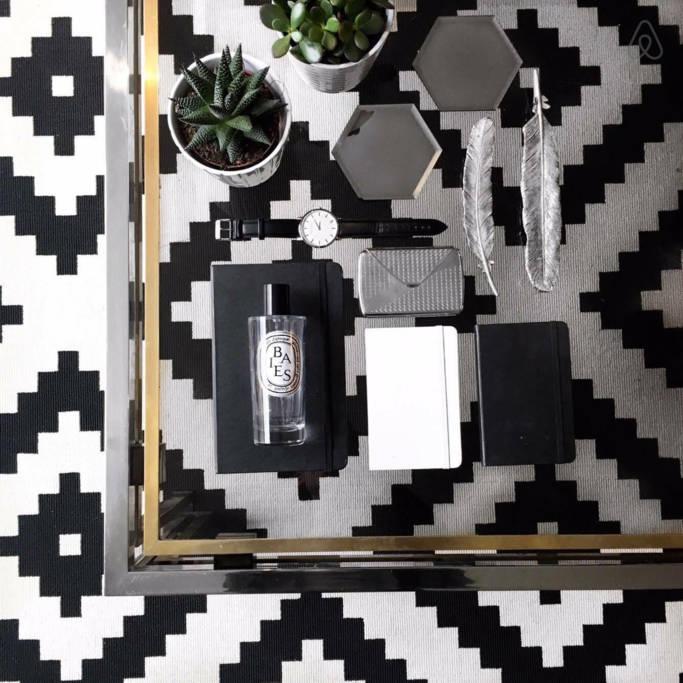 Succelents flatlay on Ikea monochrome rug