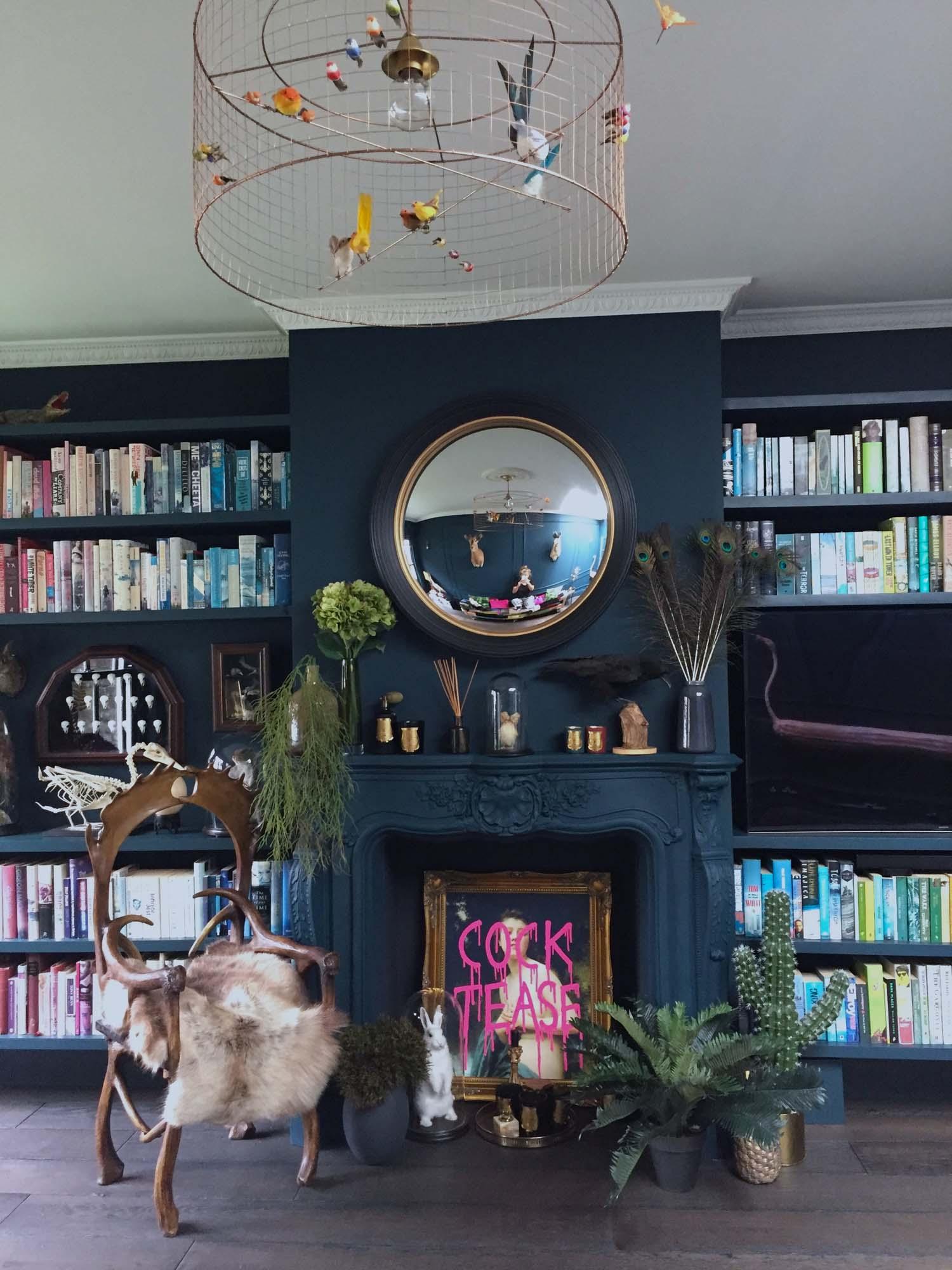 Dark blue living room with colour coded bookshelf