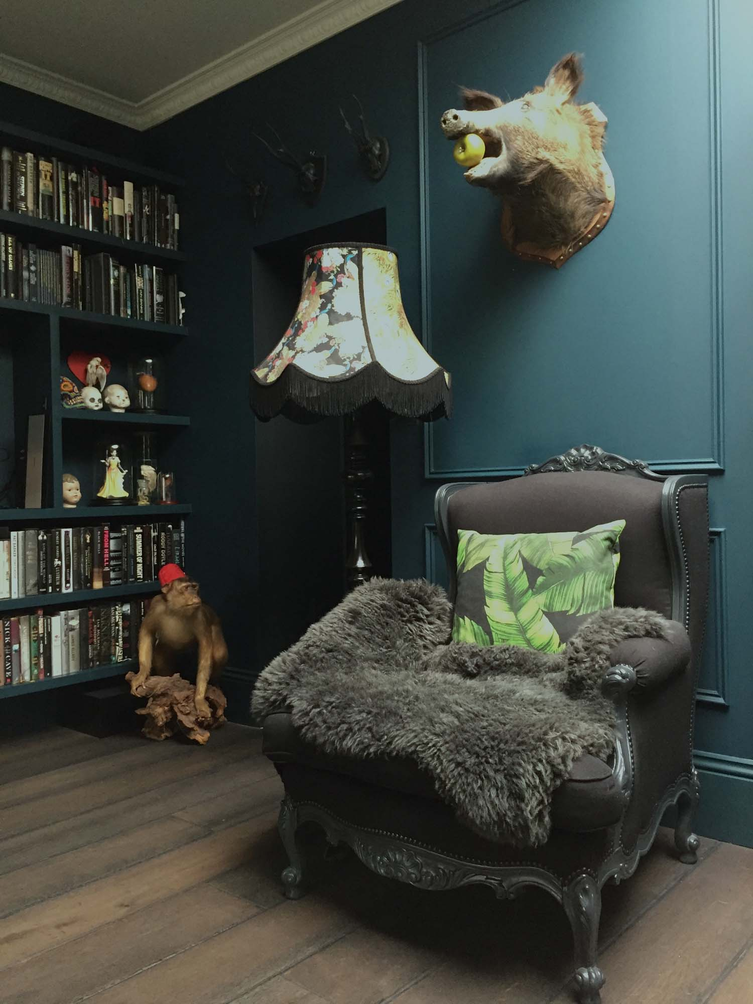 Most of Laurie's taxidermy comes from Get Stuffed in Islington