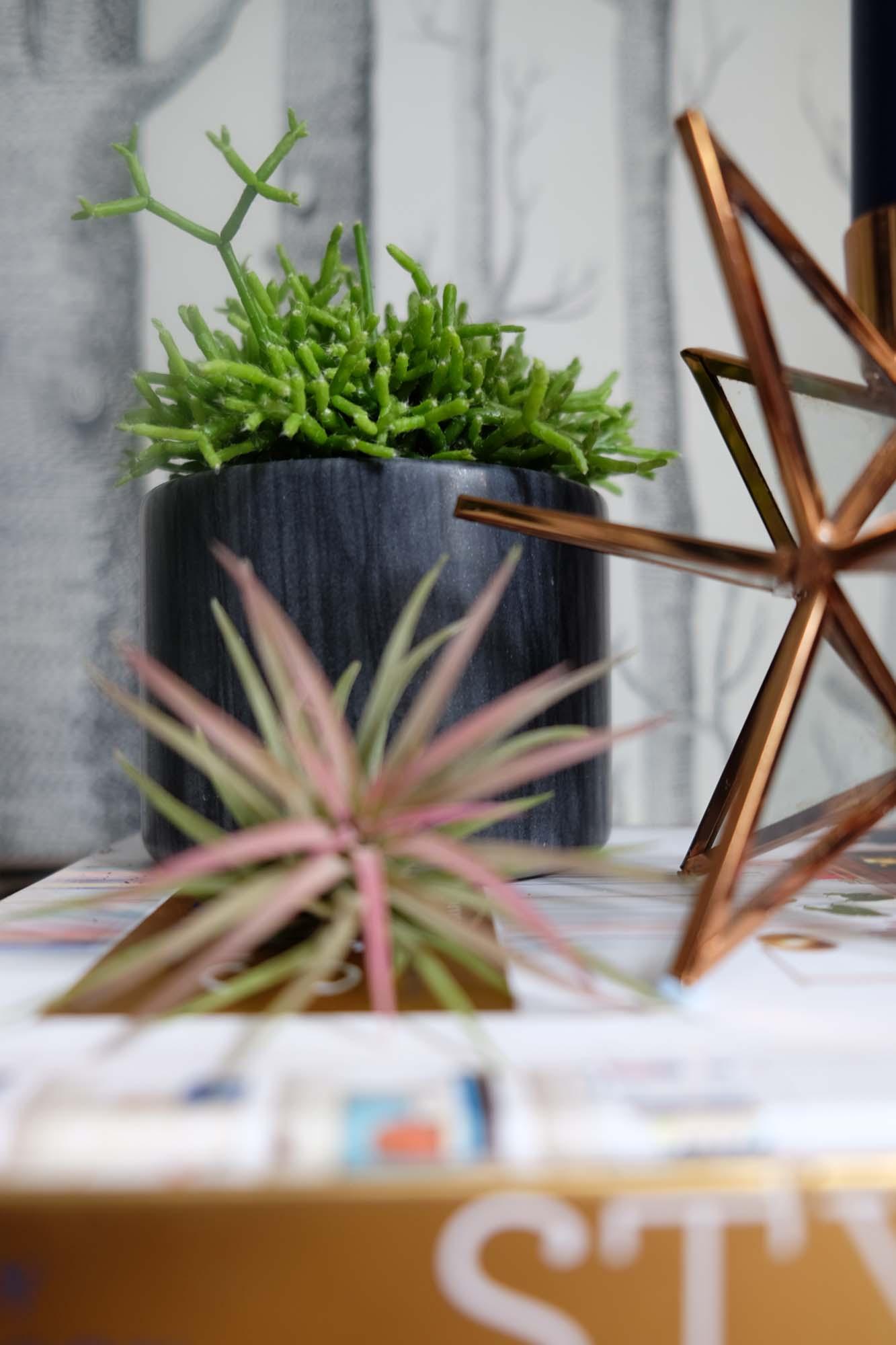 Copper  Estello candlestick ; Black  Sevan marble pots ,all La Redoute