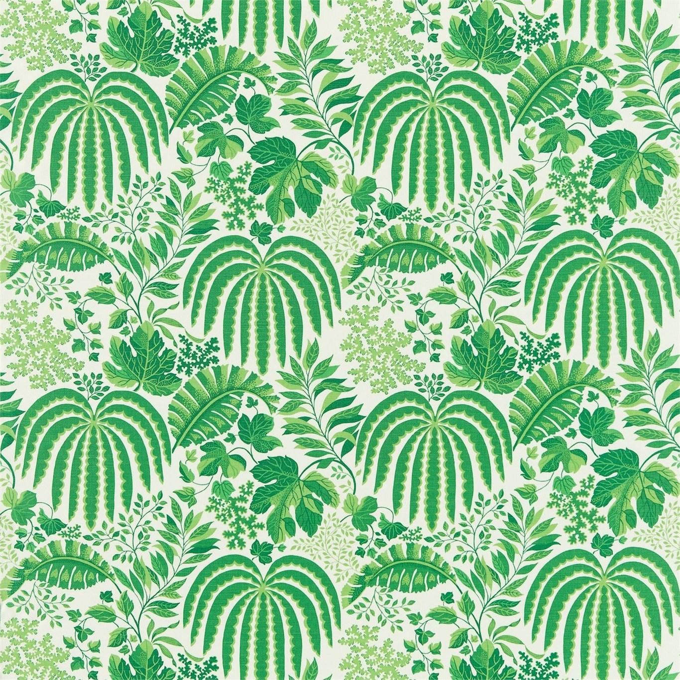 Rainforest by  Sanderson