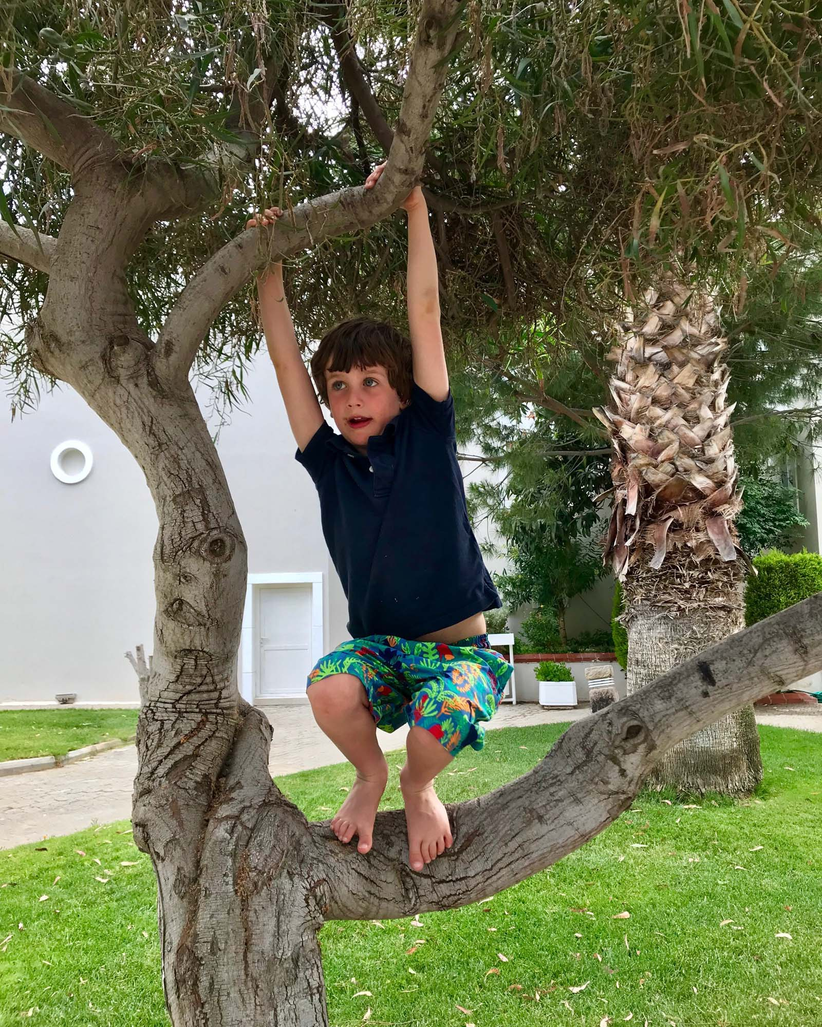 Zac up one of the many trees in the Phokaia resort. Yes that's chocolate round his mouth