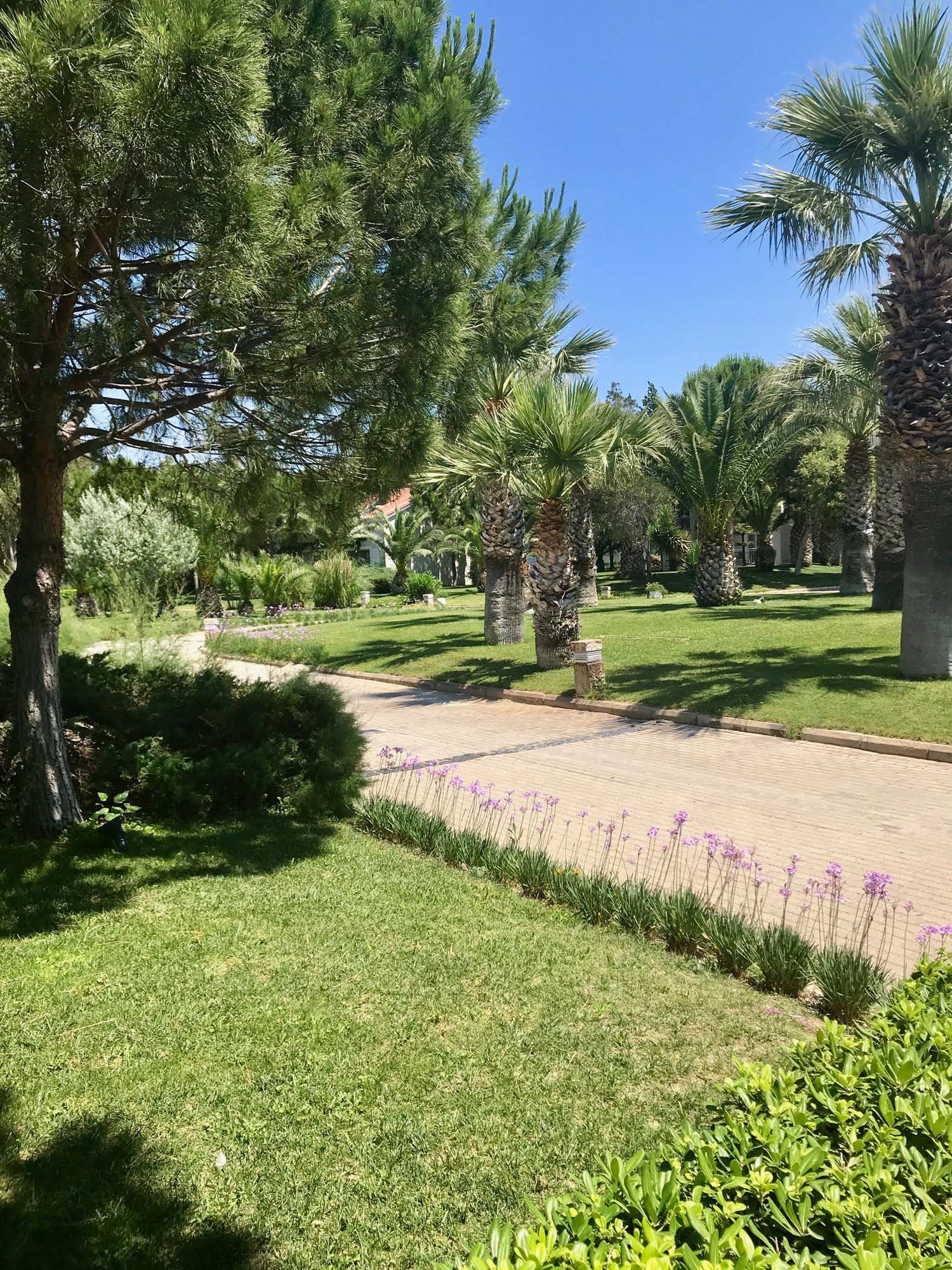 The resort's gardens