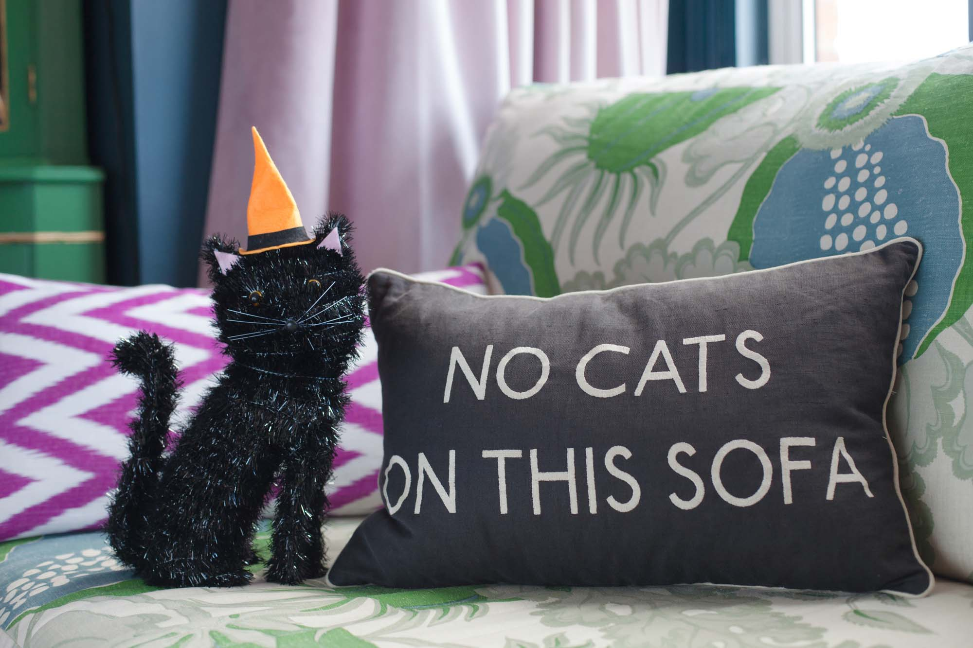 No cats on this sofa at Halloween
