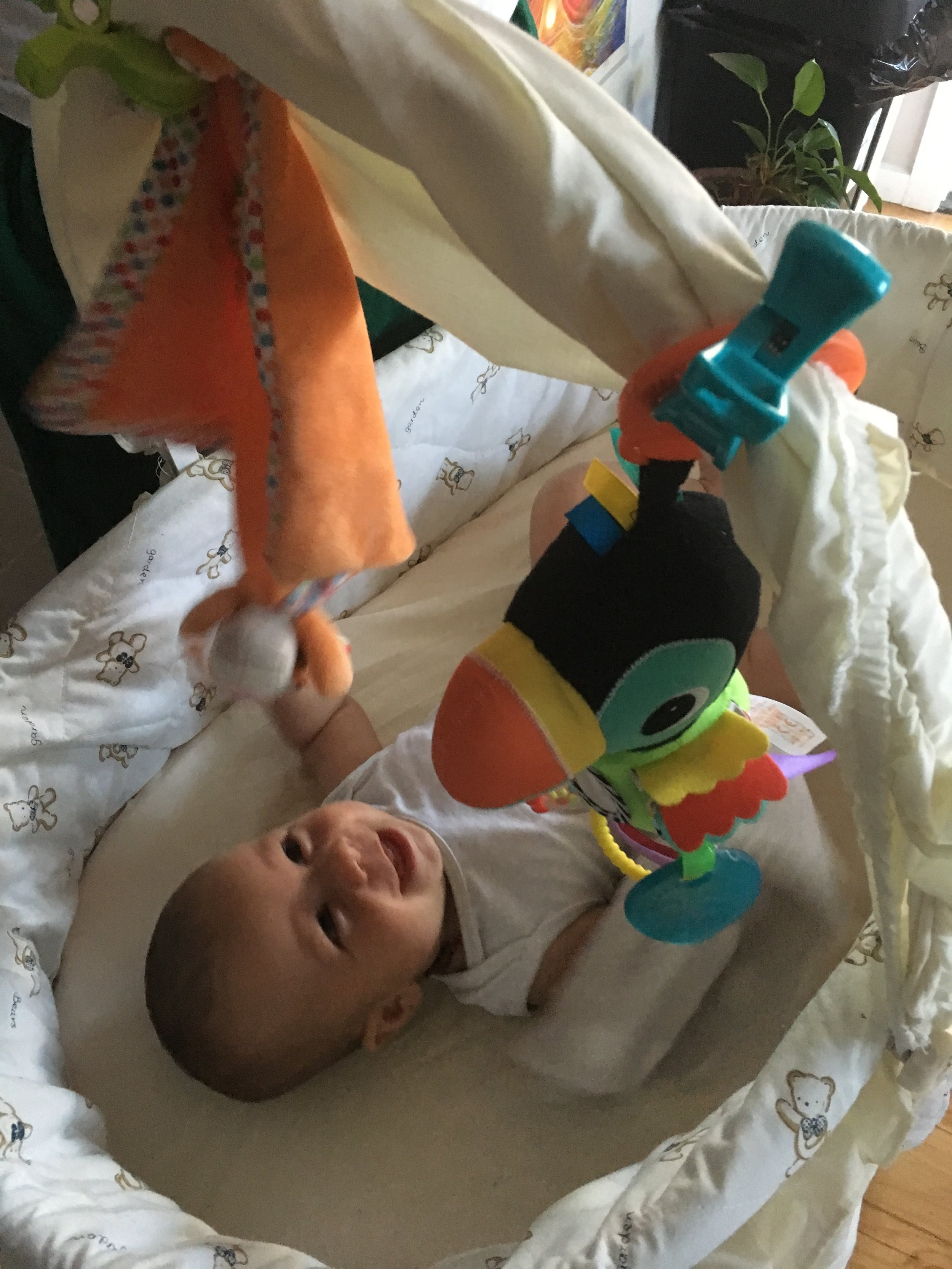 Archer's bassinet: we use 'Pram clips' to hang his toys up!