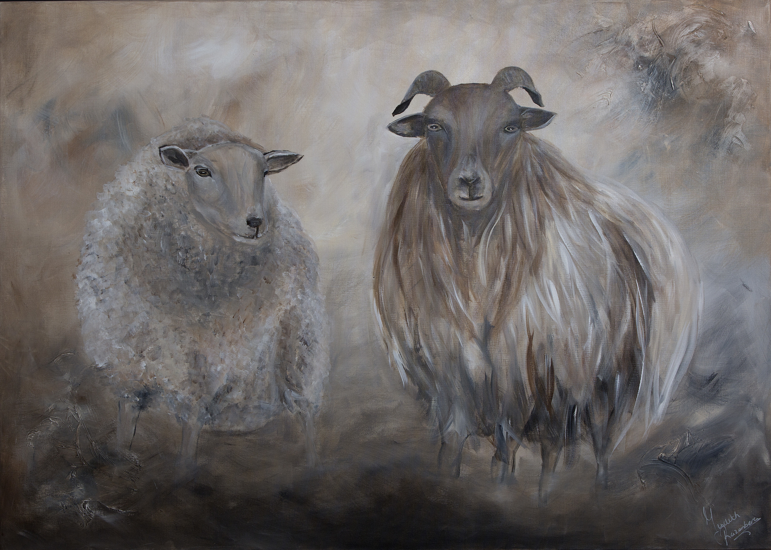 schapen zonder kader (2).jpg